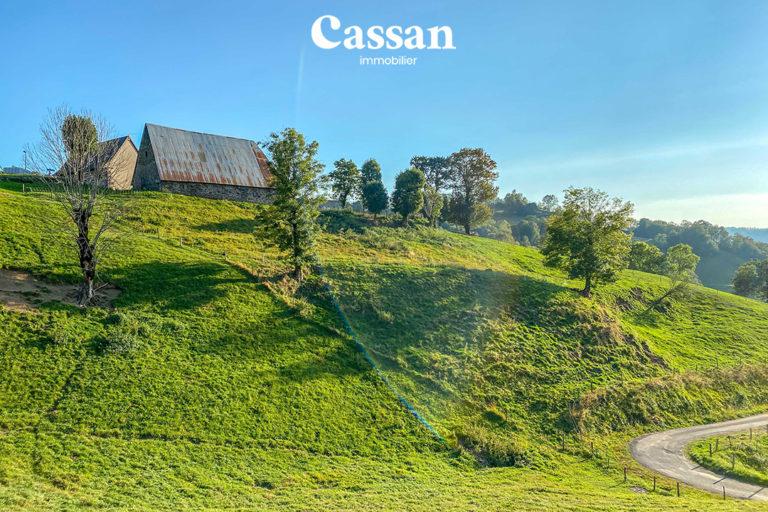 maison vallée jordanne cantal